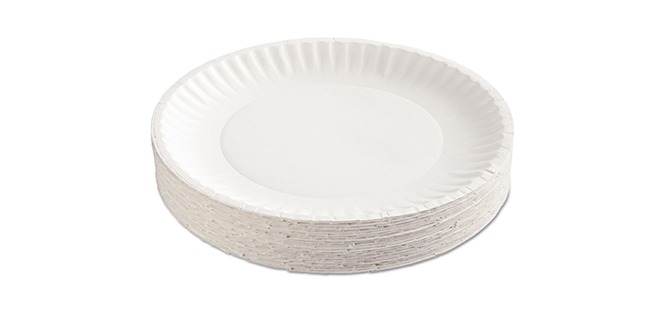 paper plate1